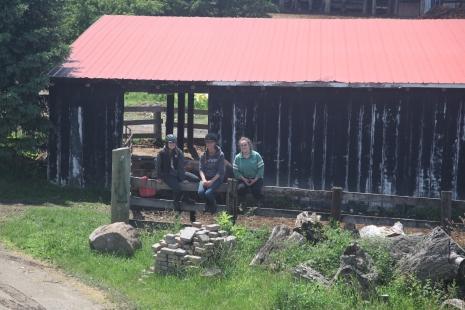 Around the farm 2